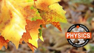 Herbstangebot-2018 - physics - Zentrum für Physio- und Traingstherapie in Wasserburg am Inn